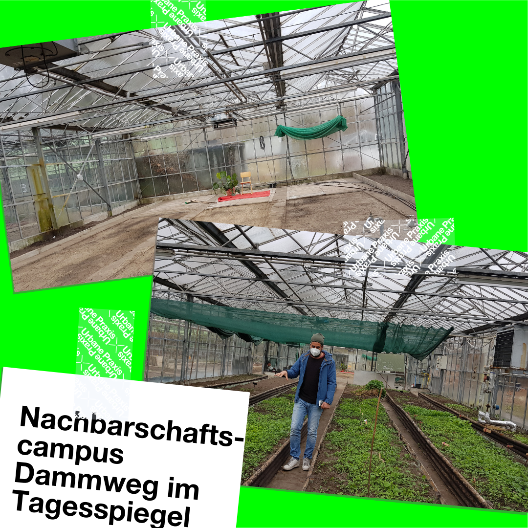 Two pictures of the greenhouses on the Dammweg neighborhood campus